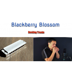 Blackberry Blossom backing tracks Backing Tracks  $2.99