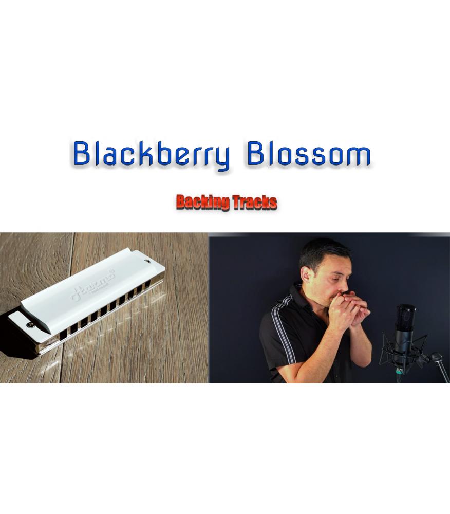 Blackberry Blossom backing tracks Backing Tracks  $2.99