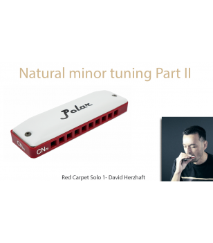 Natural minor harmonica - Red Carpet part II - Solo 1 Improvisation  $14.90