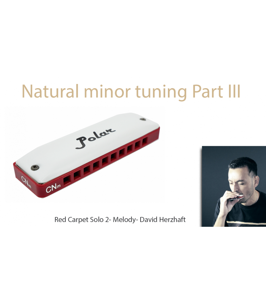 Natural minor harmonica - Red Carpet part III - Solo 2 + Melody Jazz  $14.90