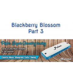 Blackberry Blossom Part 3 Country  $9.90