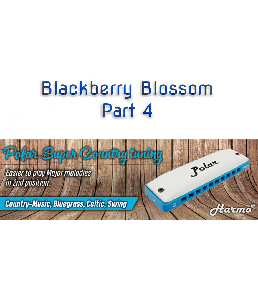 Blackberry Blossom Part 4 Country  $14.90
